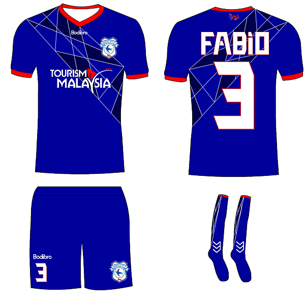 Cardiff City Home- Bodibro Hazard Template