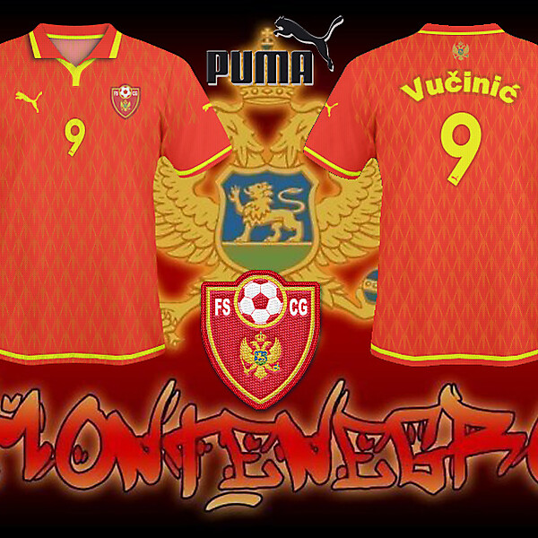 FS Montenegro Home Shirt 2010/11