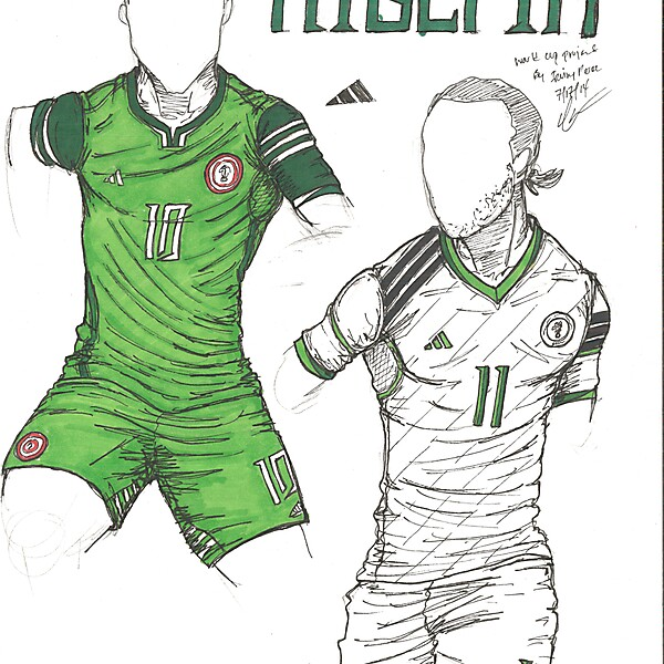 World Cup Project by Irvingperceni - Group F - Nigeria