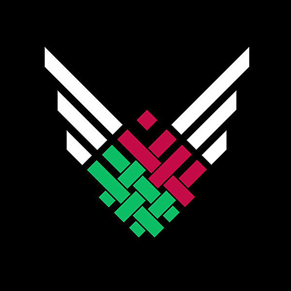 Belarus National team white wings alternate logo idea