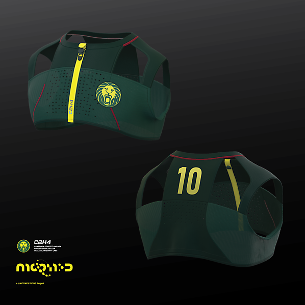 2022 Cameroon home shirt concept