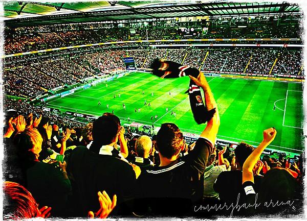 German Football Fans in flight