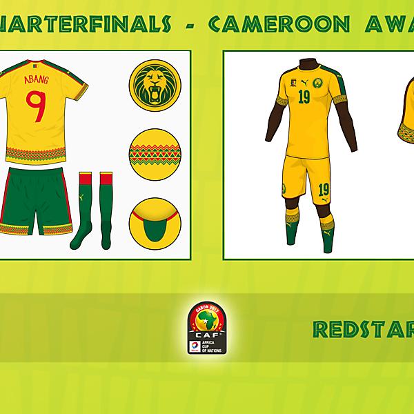 Voting - Cameroon Away