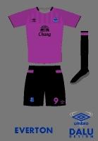 Everton away kit