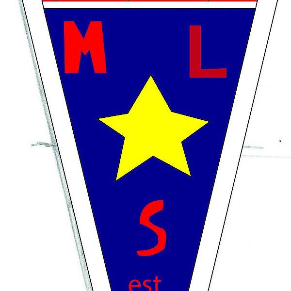 MLS  custom logo 2015
