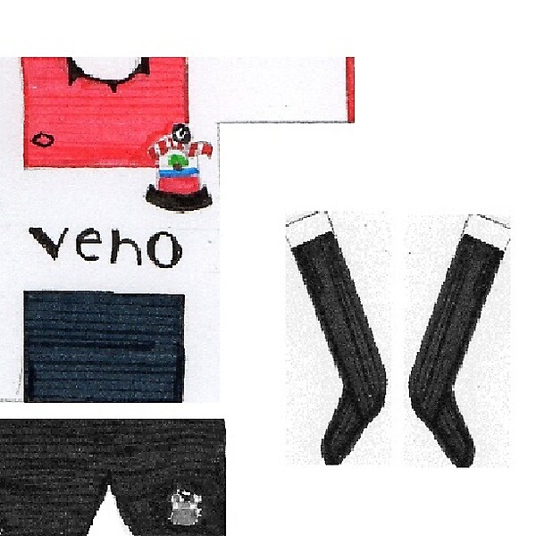 Southampton Home 2014/15 Kit