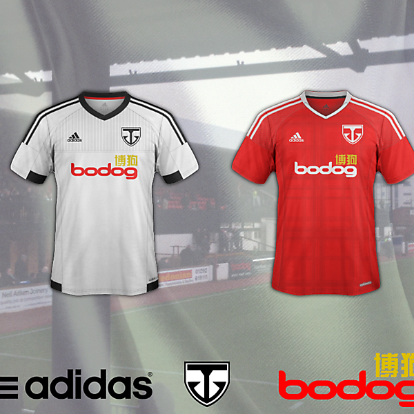 Ayr United Home and Away (1938-48 crest)
