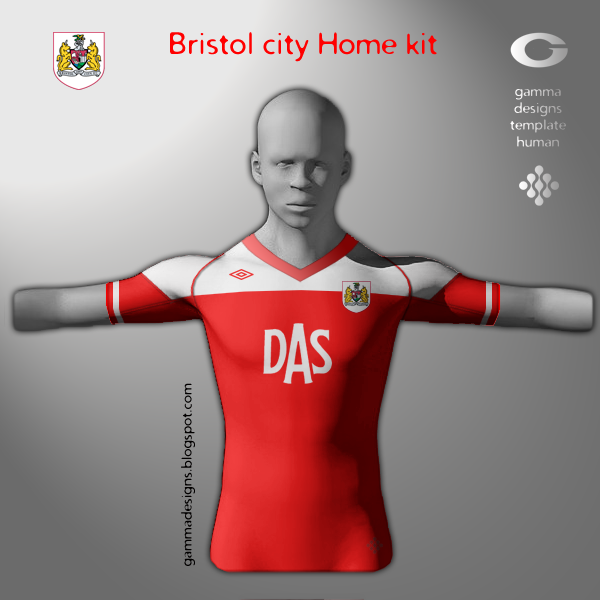 Bristol city 2014-15