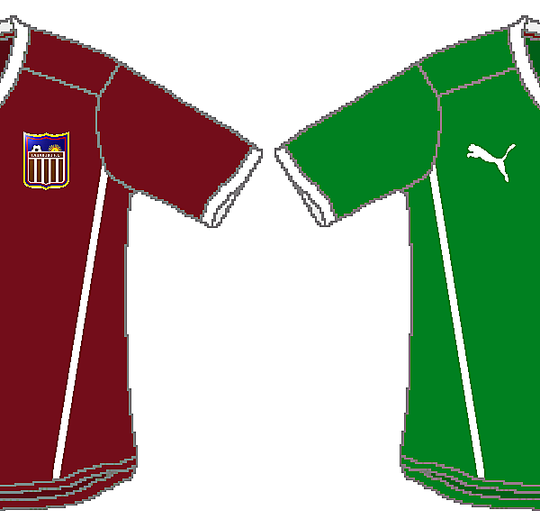 Carabobo FC Puma Home and Away
