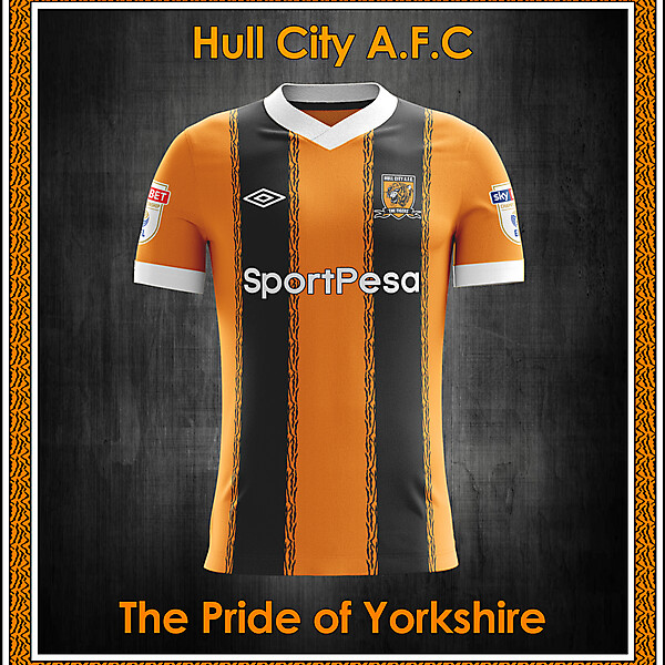 Hull City AFC home concept