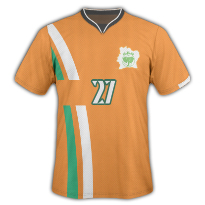 World Cup 2010 - Ivory Coast