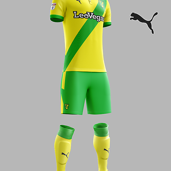 Norwich City home concept