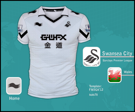 Swansea City home burrda