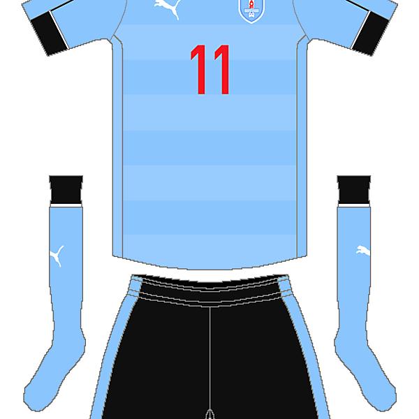 Uruguay Puma Home Kit