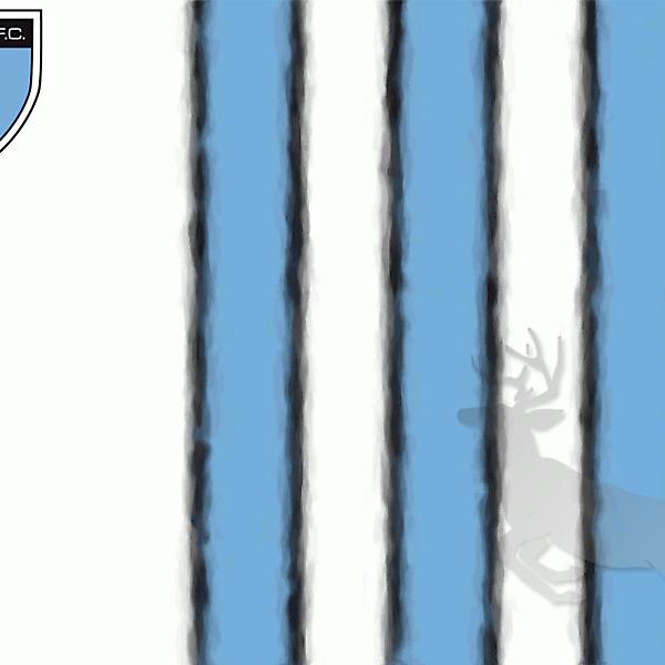 Mérida Fútbol Club Flag