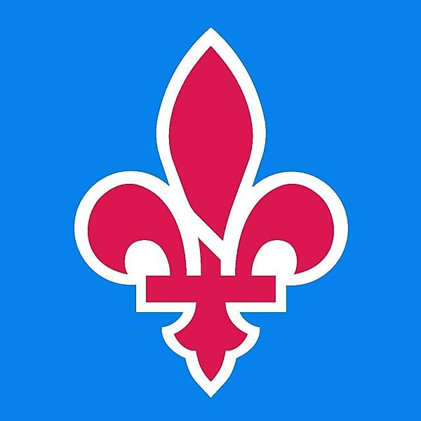 Quebec Nordiques alternative logo concept .